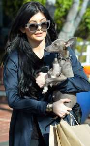 20150402_94532_kylie_jenner_con_il_cane_bambi